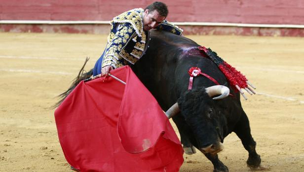 El Fandi, esta semana en Almería