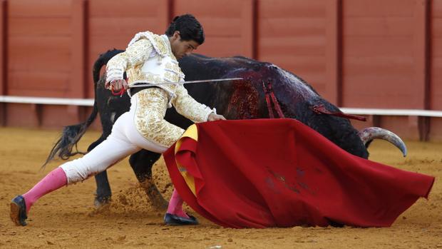 Pablo Aguado se dobla con el toro
