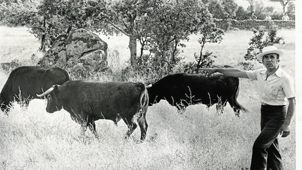 Resultado de imagen de Victorino Martín