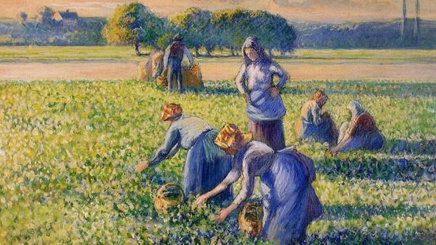 «La cosecha de guisantes», de Camille Pissarro