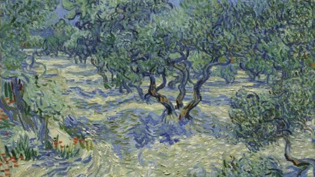 «Los olivos» (1889), de Vincent van Gogh