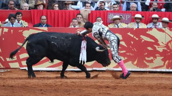 Estocada de Joselito Adame sin muleta