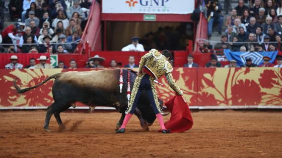 Derechazo del torero de Galapagar