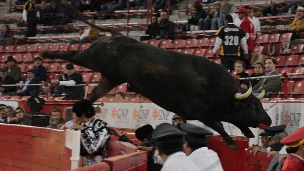 El quinto toro salta al callejón de la Monumental de Insurgentes