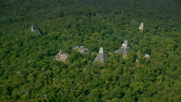 La megalópolis maya Tikal, en medio de la selva