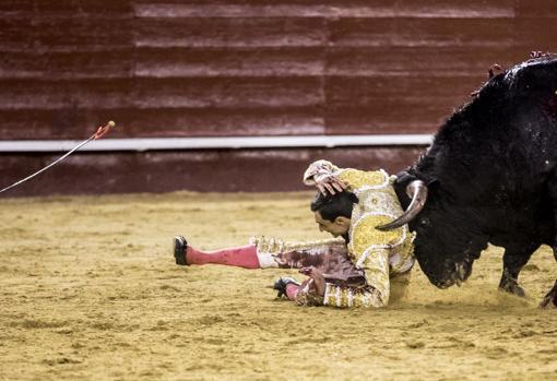 Dramático momento, con Ureña en la arena a mercede del toro