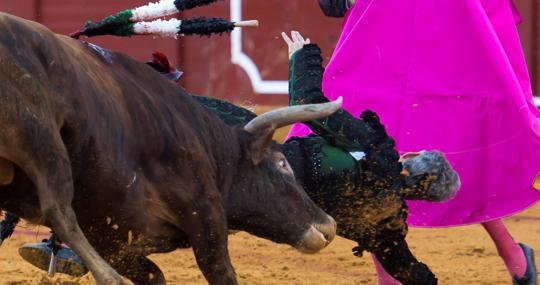 Curro Javier se libró de milagro de la cornada