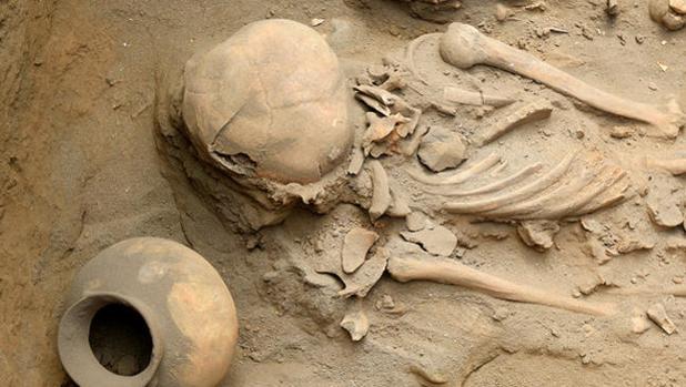 Restos hallados en la excavación