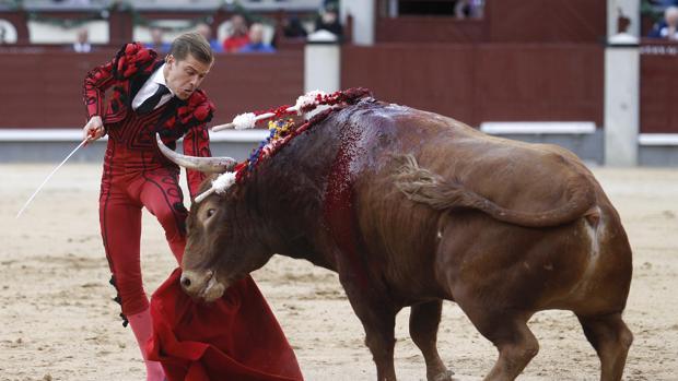 Javier Cortés, en el momento de sr prendido por el quinto de la tarde, al que cuajó una asentada faena