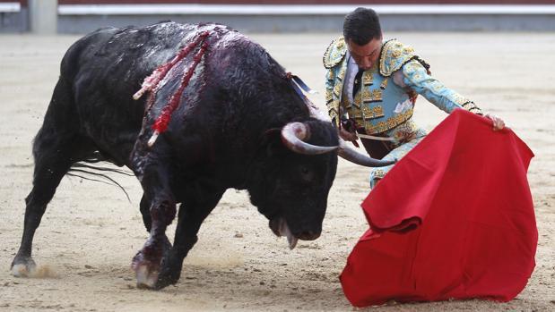 Octavio Chacón se dobla con el toro