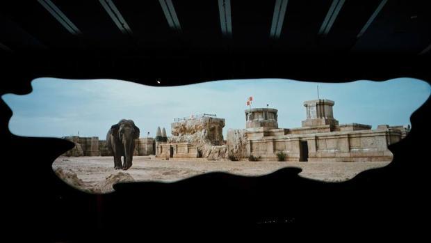 Imagen del vídeo de Invernomuto
