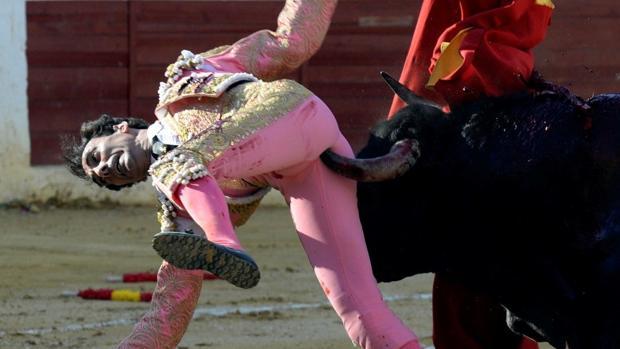 El pitón del toro penetra en la zona perineal de Serranito