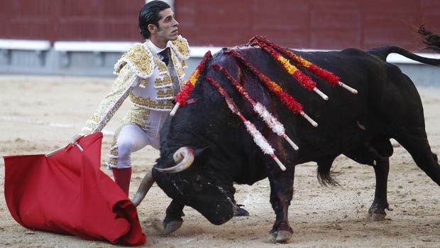 Alejandro Talavante, autor del mejor y más auténtico toreo en San Isidro