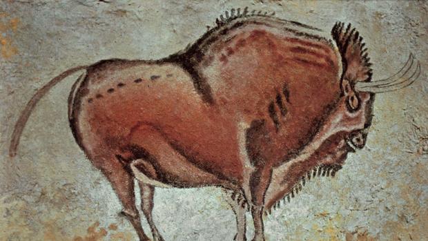 El bisonte de Altamira que se halla en la Cueva de Altamira en Santillana del Mar (Cantabria)