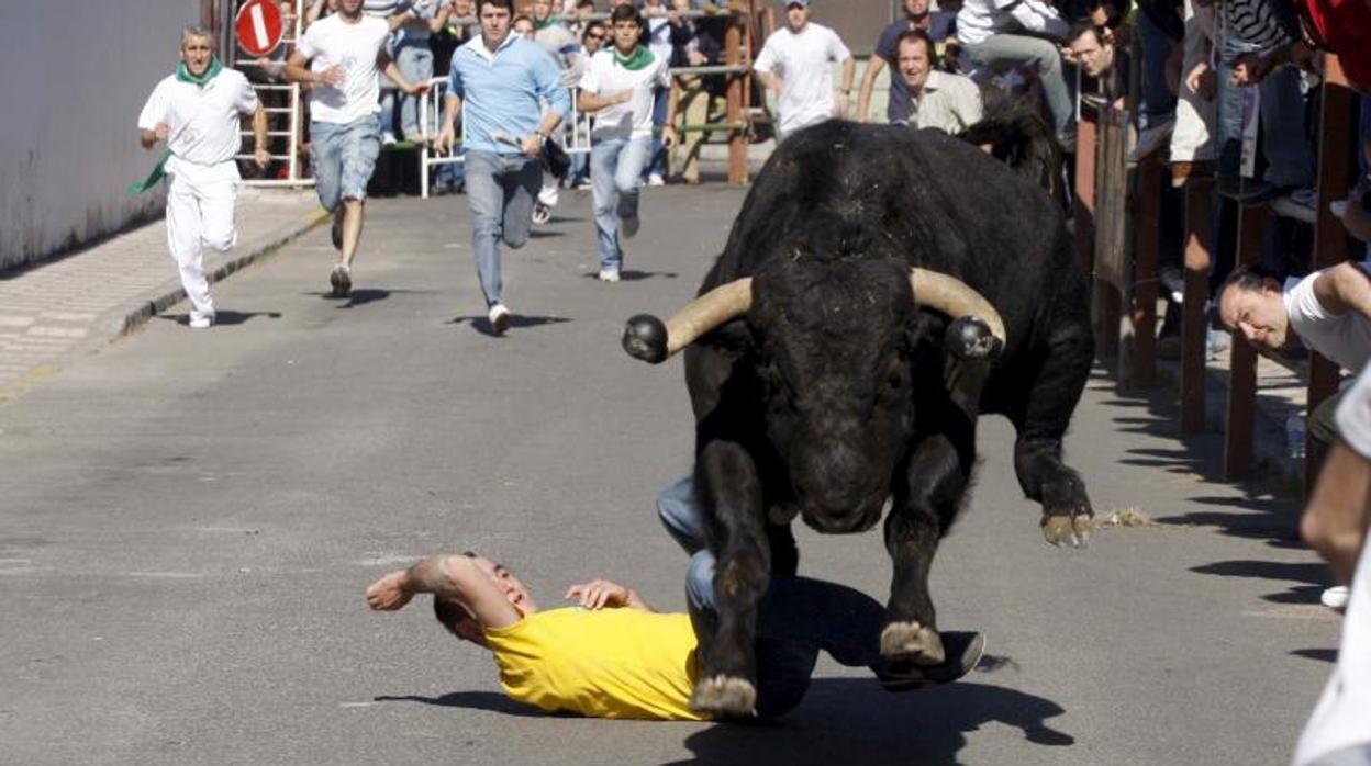 Muere un hombre de 71 años embestido por el toro embolado en Jérica