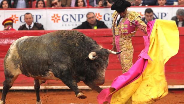 Ignacio Garibay, con su último toro, «Matita de Romero»