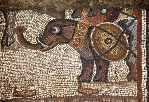 Mosaico del Elefante: ¿del ejército de Alejandro, de los Asmoneos?