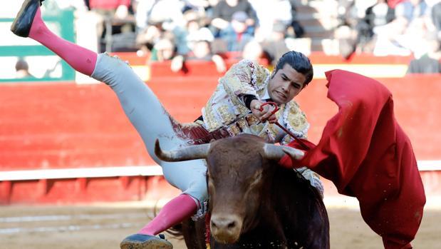 Feria de Fallas: herido San Román, triunfa Borja Collado
