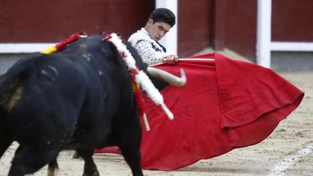 Excelente novillada del Conde de Mayalde en Las Ventas