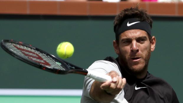 Del Potro frena a Federer