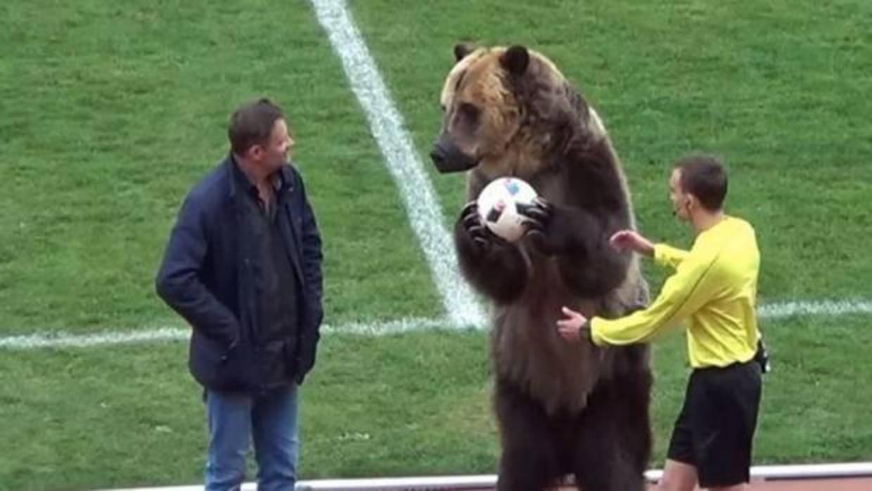 El saque de honor de un oso en el fútbol ruso