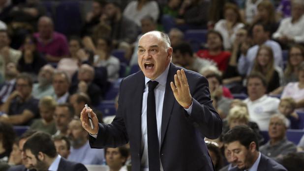 La lección del maestro Obradovic que debe inspirar al Real Madrid en Atenas