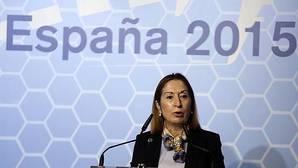 Bildu bloquea las expropiaciones y paraliza obras del AVE en la «Y vasca»