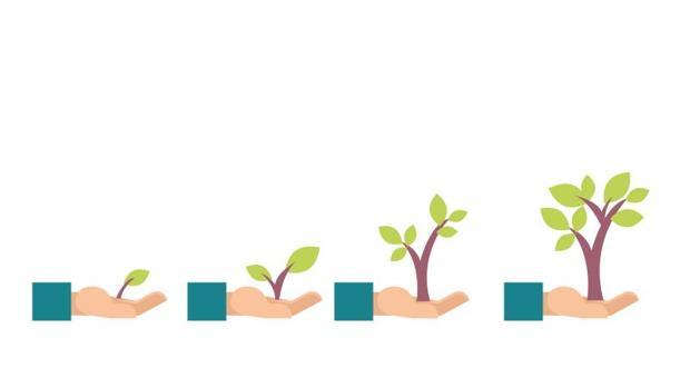 Las entidades suelen adaptar el interés de sus productos al nivel de solvencia del solicitante