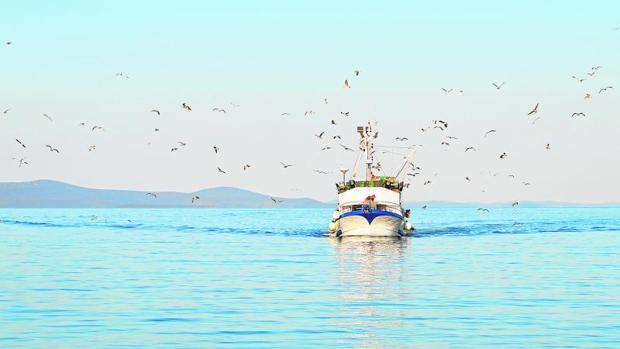 La industria pesquera española se enfrenta a un mar de fondo