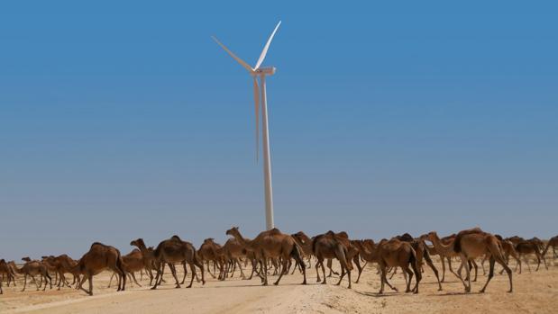 Imagen del parque eólico construido por la compañía española en Nouakchott