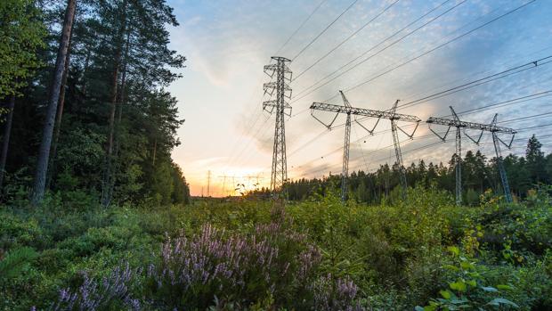 Varios postes eléctricos de la empresa Vantaa Energy