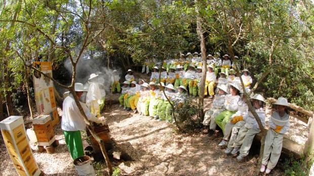 Museo de la miel en Jerez de la Frontera