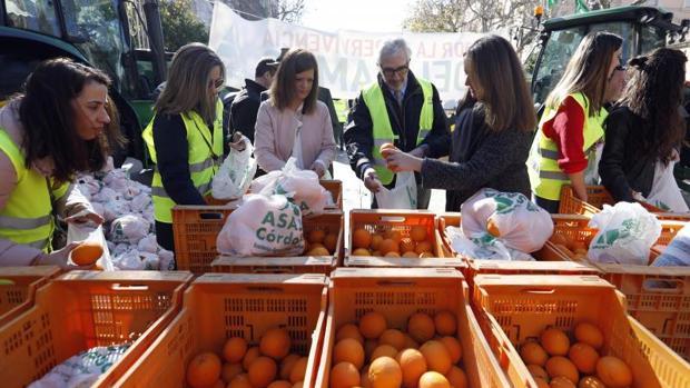 Agricultores de toda España exigen en Madrid a la UE que garantice la viabilidad del sector de los cítricos