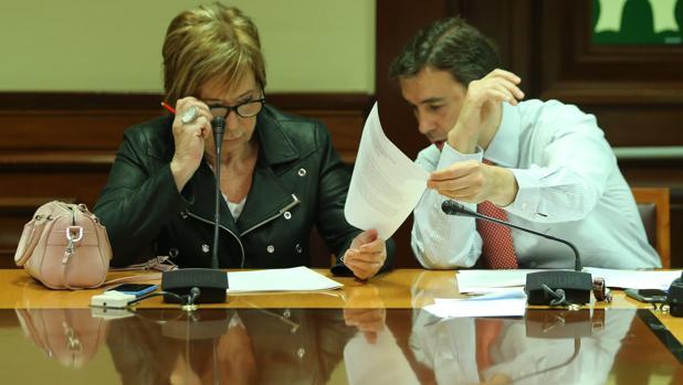 La diputada popular Celia Villalobos ha presidido durante esta legislatura la Comisión del Pacto de Toledo