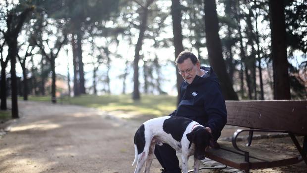 Rajoy, en La Moncloa junto a su perro, en la última jornada de reflexión