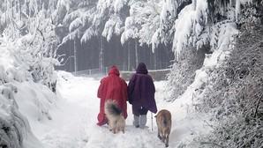 Dos peregrinos, junto a sus perros, en febrero en el Camino Primitivo en A Fonsagrada (Lugo)