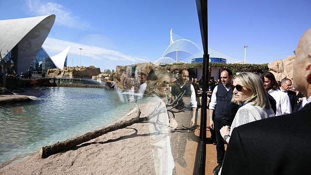 Conozca las nuevas especies e instalaciones del - Empresas de construccion valencia ...