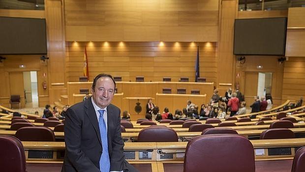 El vicepresidente del Senado y expresidente de La Rioja, Pedro Sanz
