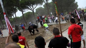 Los orígenes del Torneo de la Vega se remontan a la Edad Media