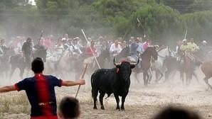 El toro es perseguido por lanceros a pie y a caballo hasta darle muerte