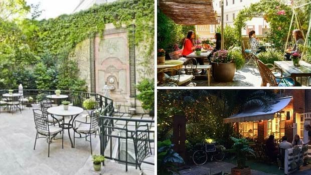 Los jardines y patios de madrid vergeles para desconectar for Limpieza de jardines madrid