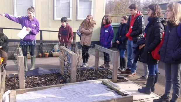 Imagen de una de las actividades realizadas por los alumnos, en este caso la creación de un huerto escolar en Inglaterra