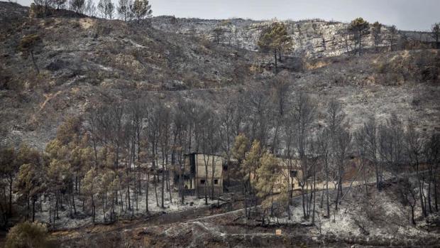Hemeroteca: Empiezan a controlar los incendios de Valencia tras arrasar 2.800 hectáreas   Autor del artículo: Finanzas.com