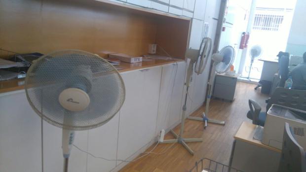 Una plaga de pulgas y temperaturas de treinta grados en for Oficinas de empleo valencia