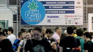 El Ayuntamiento de Alicante legaliza los clubes de fumadores de cannabis