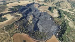 Un detenido por un incendio forestal que arrasó 60 hectáreas