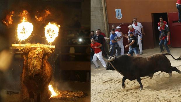 Unidos Podemos quiere acabar con el Toro Júbilo (izq) y el Toro Enmaromado (dcha)