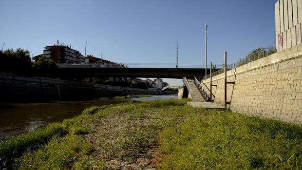 El río Manzanares en una de sus zonas con menos caudal en la capital