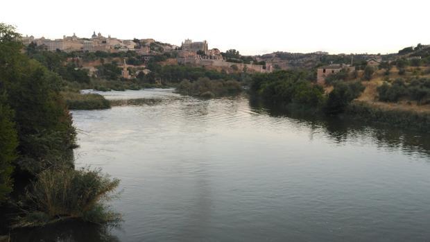Reserva natural fluvial del río Tajo