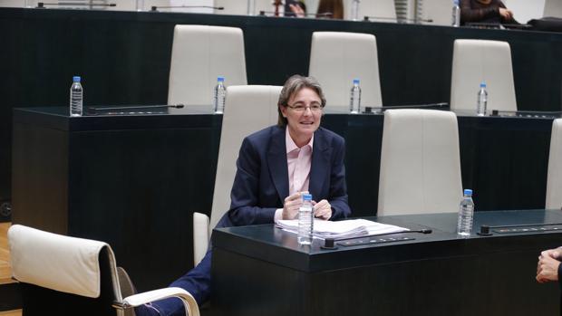 Marta Higueras, durante un pleno del Ayuntamiento
